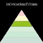 Maslowsche Bedürfnispyramide - Individualbedürfnisse