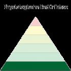 Maslowsche Bedürfnispyramide - Physiologische Bedürfnisse